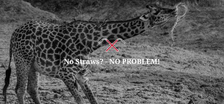 The Mushara Collection is saying no to plastic straws